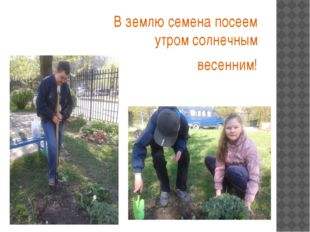 В землю семена посеем утром солнечным весенним!