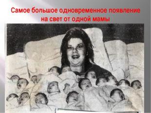 Самое большое одновременное появление на свет от одной мамы