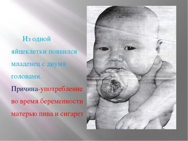 Из одной яйцеклетки появился младенец с двумя головами. Причина-употребление...