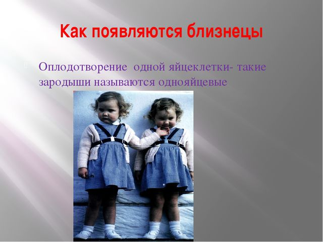 Как появляются близнецы Оплодотворение одной яйцеклетки- такие зародыши назыв...