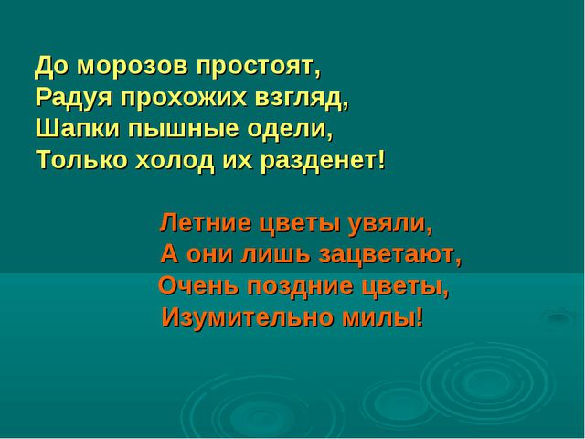 До морозов простоят, Радуя прохожих взгляд, Шапки пышные одели, Только холод...