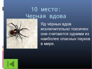 10 место: Черная вдова Яд чёрных вдов исключительно токсичен: они считаются о