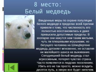 8 место: Белый медведь Введенные меры по охране популяции белого медведя в пр