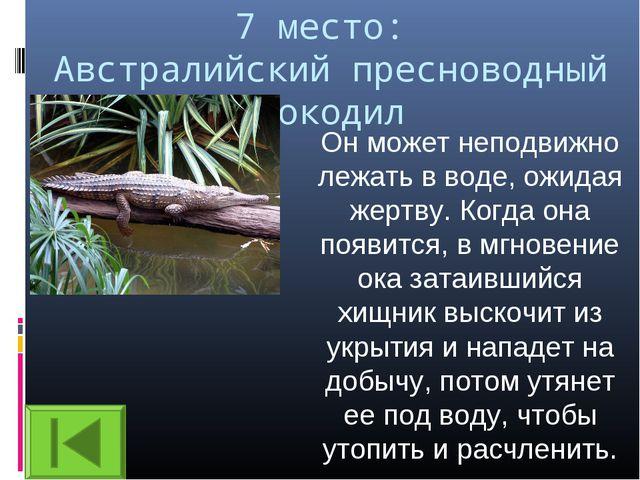 7 место: Австралийский пресноводный крокодил Он может неподвижно лежать в вод...