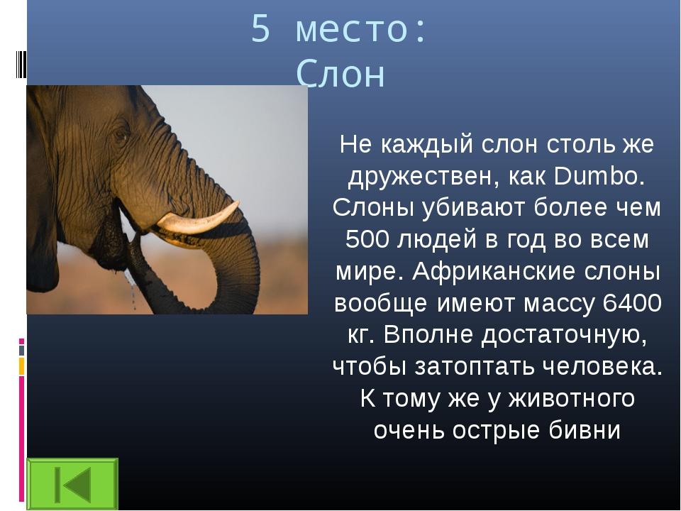 5 место: Слон Не каждый слон столь же дружествен, как Dumbo. Слоны убивают бо...