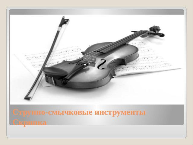 Струнно-смычковые инструменты Скрипка