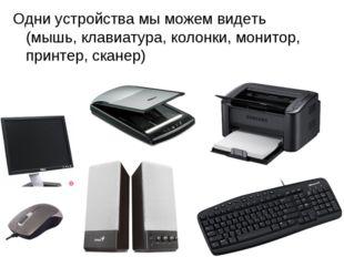 Одни устройства мы можем видеть (мышь, клавиатура, колонки, монитор, принтер,