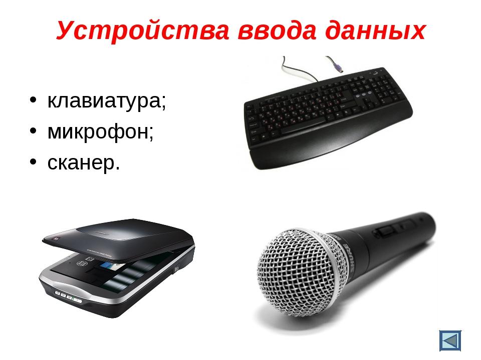 Устройства ввода данных клавиатура; микрофон; сканер.