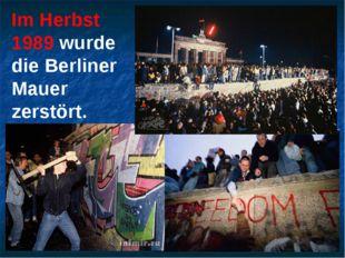 Im Herbst 1989 wurde die Berliner Mauer zerstört.