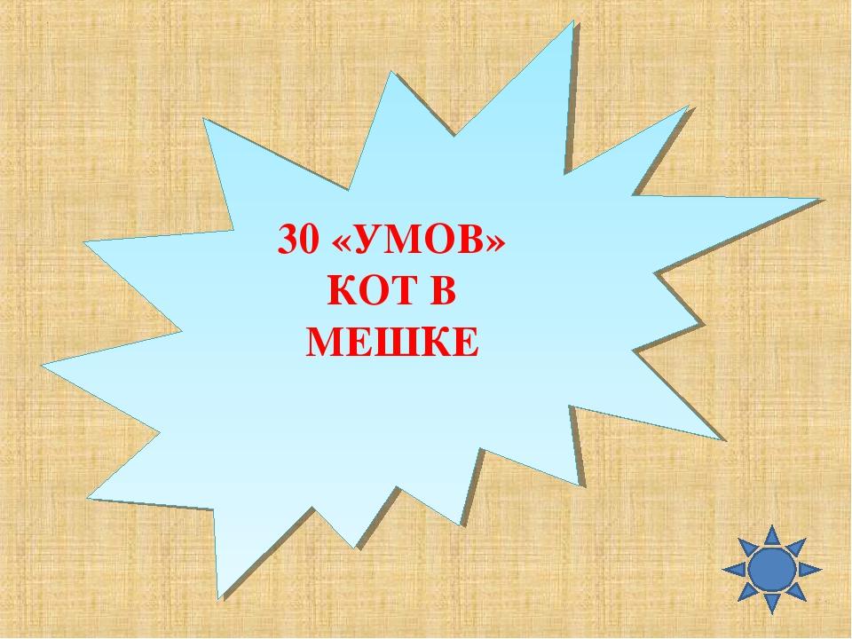 30 «УМОВ» КОТ В МЕШКЕ