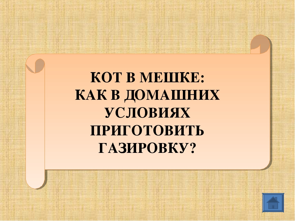 КОТ В МЕШКЕ: КАК В ДОМАШНИХ УСЛОВИЯХ ПРИГОТОВИТЬ ГАЗИРОВКУ?