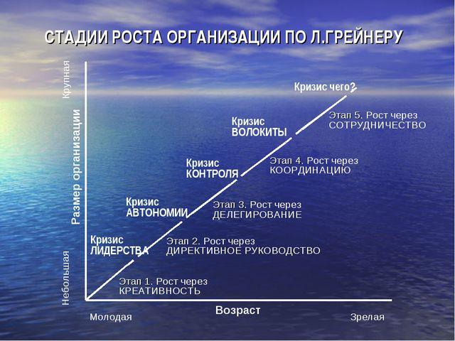 Молодая Зрелая СТАДИИ РОСТА ОРГАНИЗАЦИИ ПО Л.ГРЕЙНЕРУ