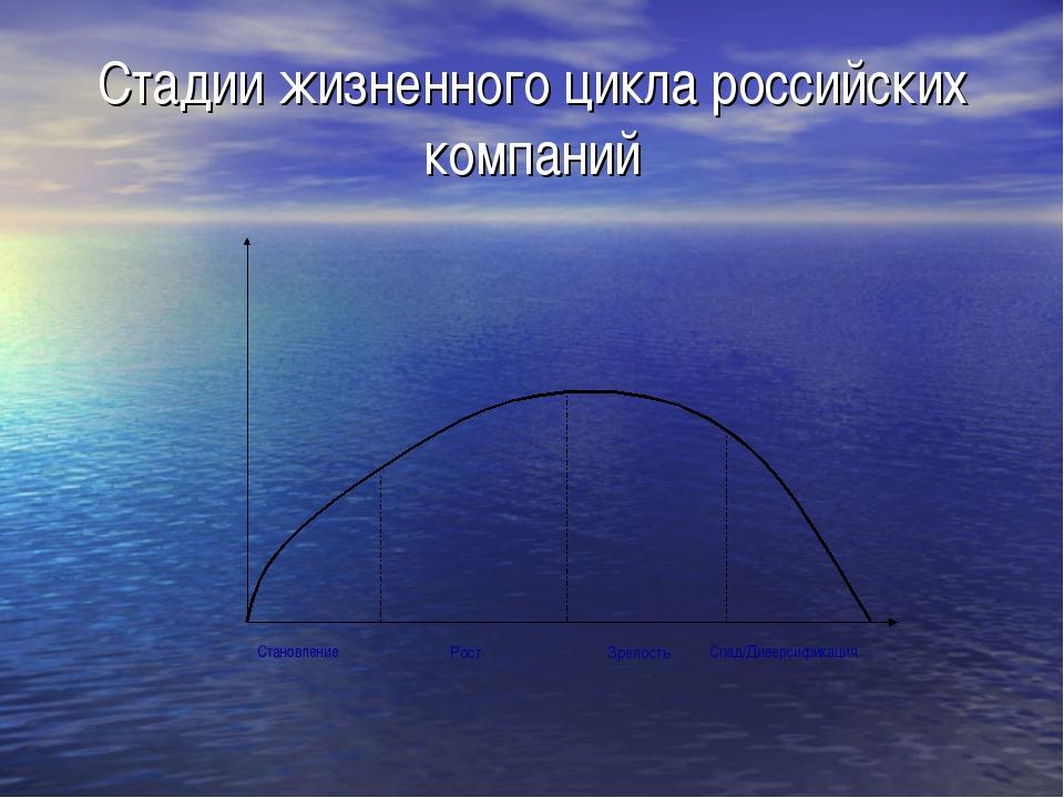 Стадии жизненного цикла российских компаний