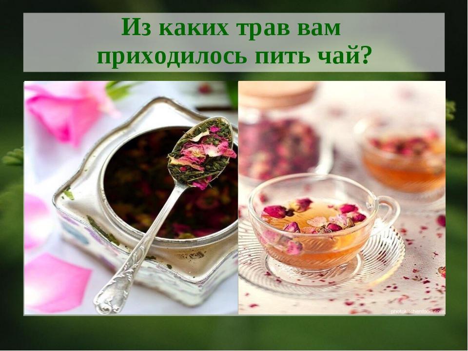 Из каких трав вам приходилось пить чай?