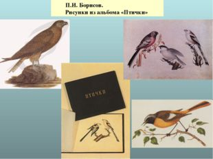 П.И. Борисов. Рисунки из альбома «Птички»