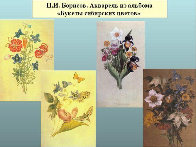 П.И. Борисов. Акварель из альбома «Букеты сибирских цветов»