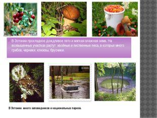 В Эстонии много заповедников и национальных парков. В Эстонии прохладное дожд