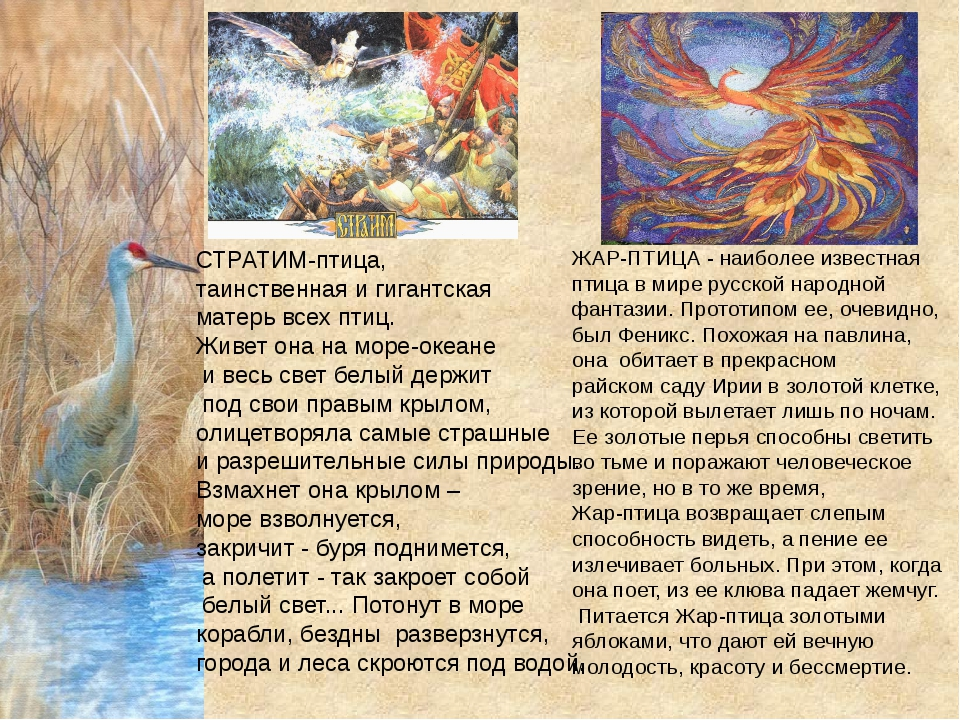 СТРАТИМ-птица, таинственная и гигантская матерь всех птиц. Живет она на море-...
