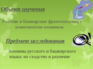 Зоонимы русского и башкирского языка: их сходство и различие Объект изучения