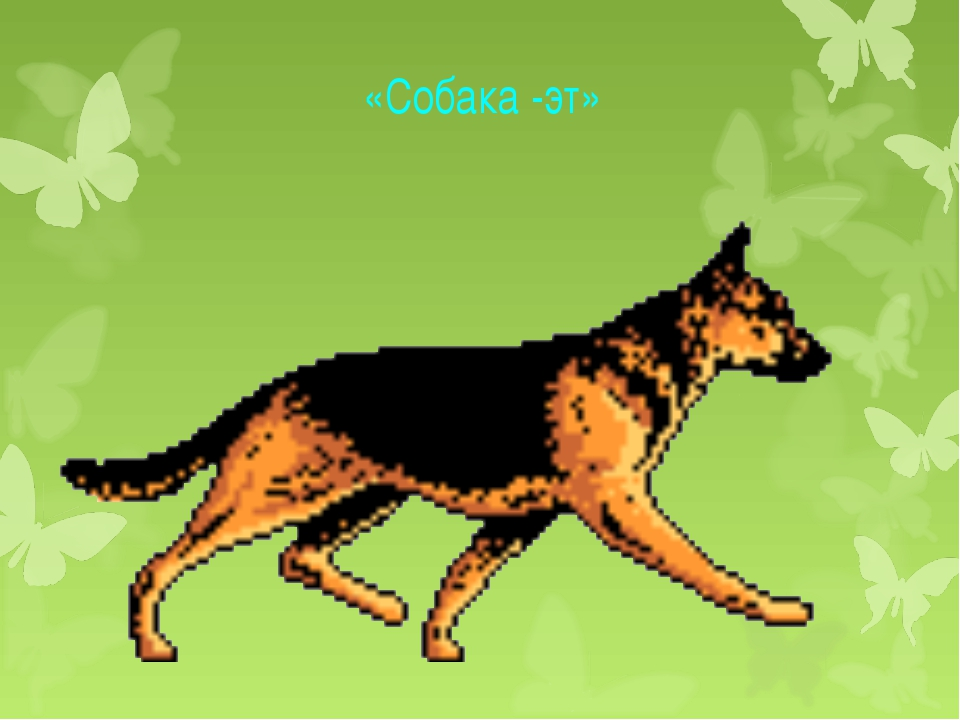«Собака -эт»
