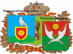 28 районов Малосердобинский район Мокшанский район