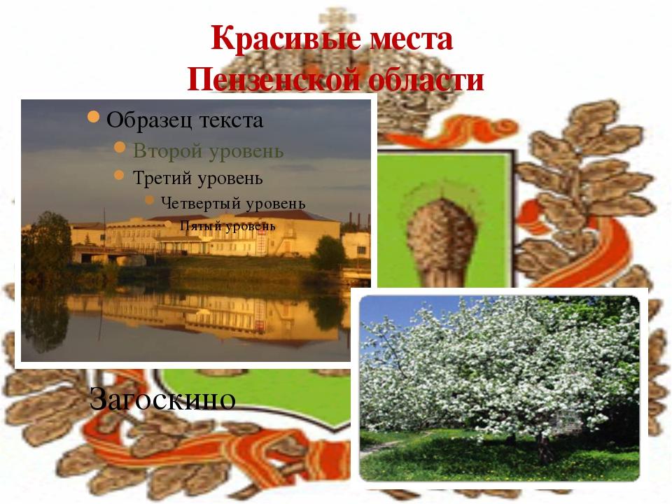Красивые места Пензенской области Загоскино