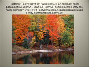 Посмотри на эту картинку. Какая необычная природа! Какие разноцветные листья