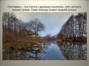 Приглядись – все листья с деревьев осыпались, небо затянуто серыми тучами. Та