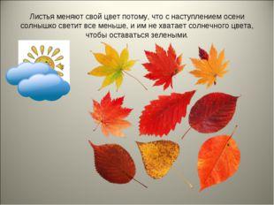 Листья меняют свой цвет потому, что с наступлением осени солнышко светит все
