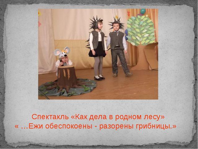 Спектакль «Как дела в родном лесу» « …Ежи обеспокоены - разорены грибницы.»