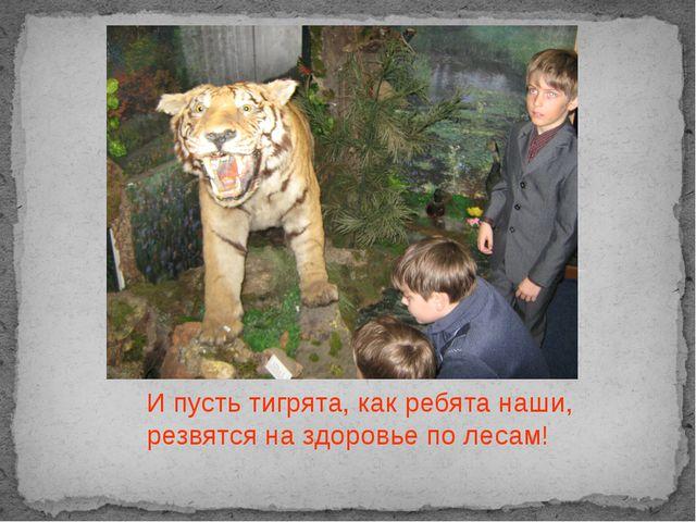 И пусть тигрята, как ребята наши, резвятся на здоровье по лесам!