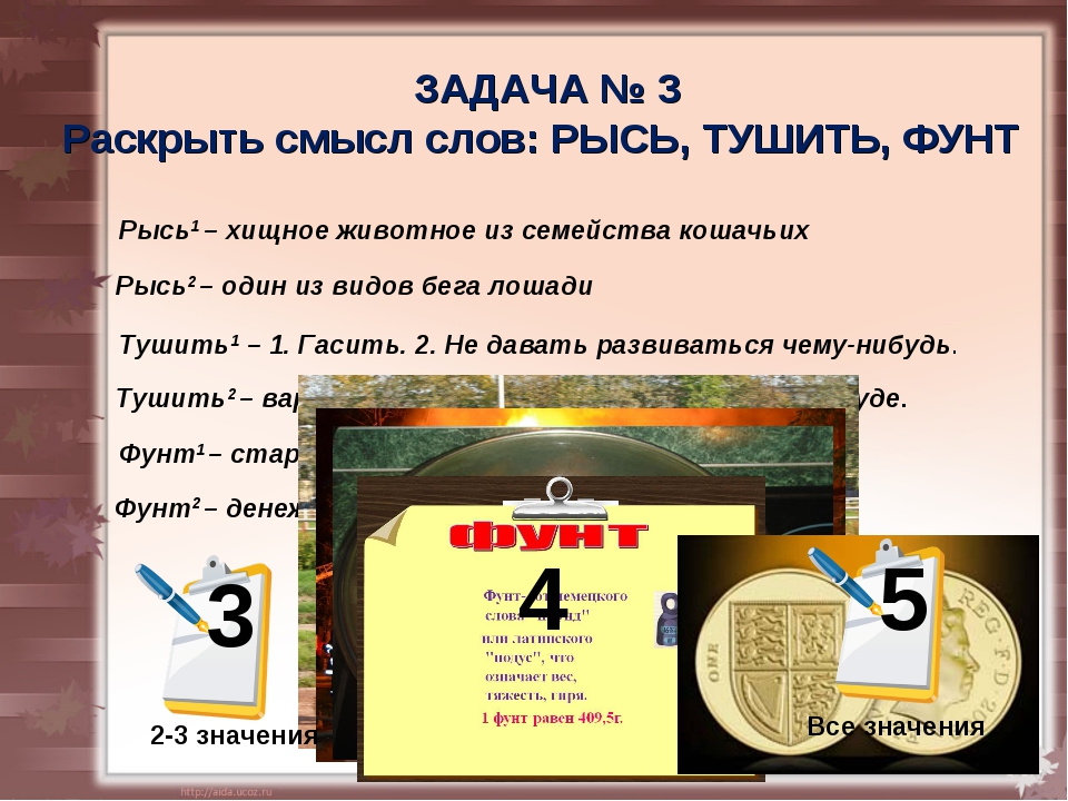 4 -5 значений ЗАДАЧА № 3 Раскрыть смысл слов: РЫСЬ, ТУШИТЬ, ФУНТ Рысь1 – хищн...