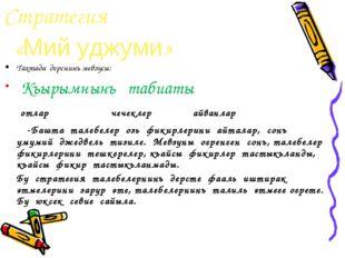 Стратегия «Мий уджуми» Тахтада дерснинъ мевзусы: Къырымнынъ табиаты отлар чеч