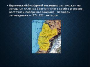 Баргузинский биосферный заповедник расположен на западных склонах Баргузинско