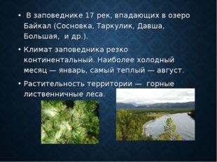 В заповеднике 17 рек, впадающих в озеро Байкал (Сосновка, Таркулик, Давша, Б