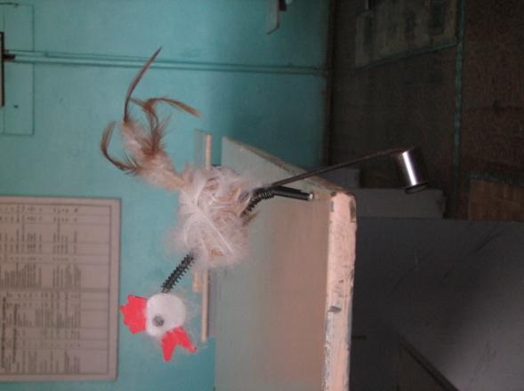 F:\Локальный диск (E1)\КОНКУРСЫ Учитель года и др\МЕТОДИЧЕСКИХ РАЗРАБОТОК конкурс-2011\МЕТОДИЧ, разраб 2014\чудо птица (4).JPG