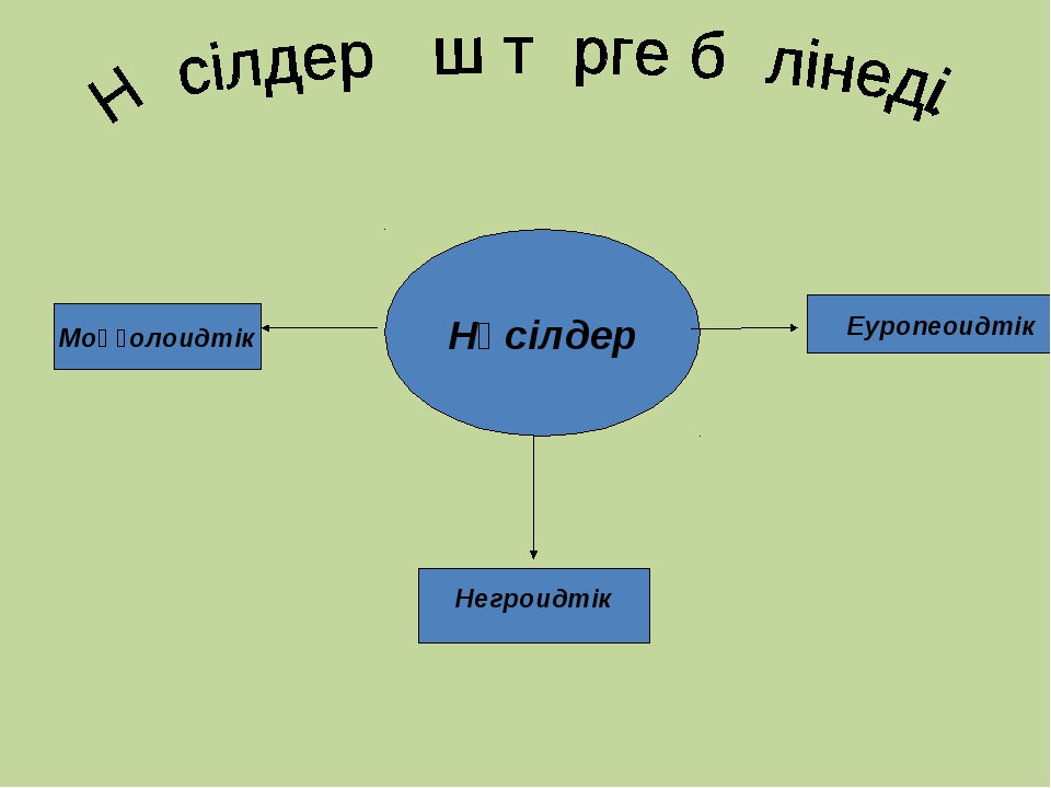 Нәсілдер Моңғолоидтік Негроидтік Еуропеоидтік
