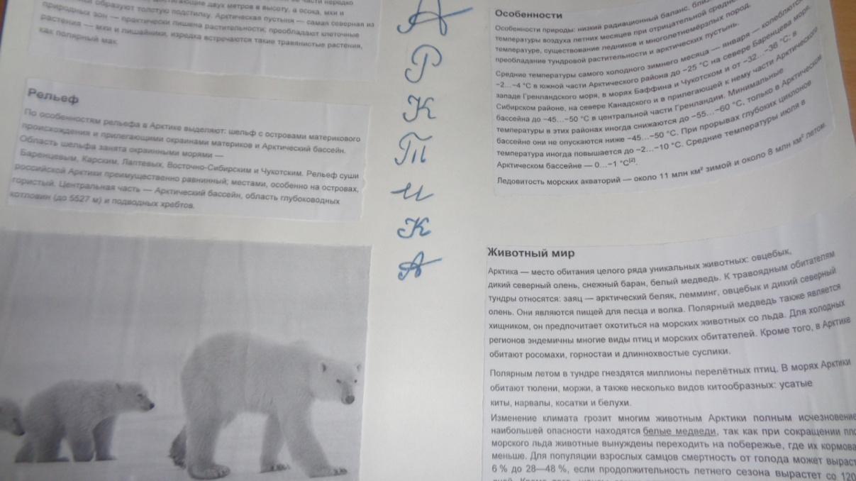 C:\Users\Светлана\Desktop\Фото Арктика\DSC02023.JPG