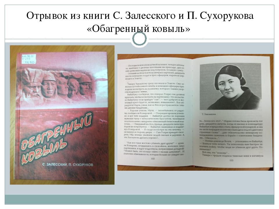 Отрывок из книги С. Залесского и П. Сухорукова «Обагренный ковыль»