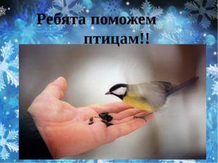 Ребята поможем птицам!!