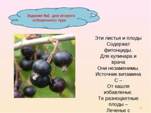* Задание №1 для второго отборочного тура Эти листья и плоды Содержат фитонци