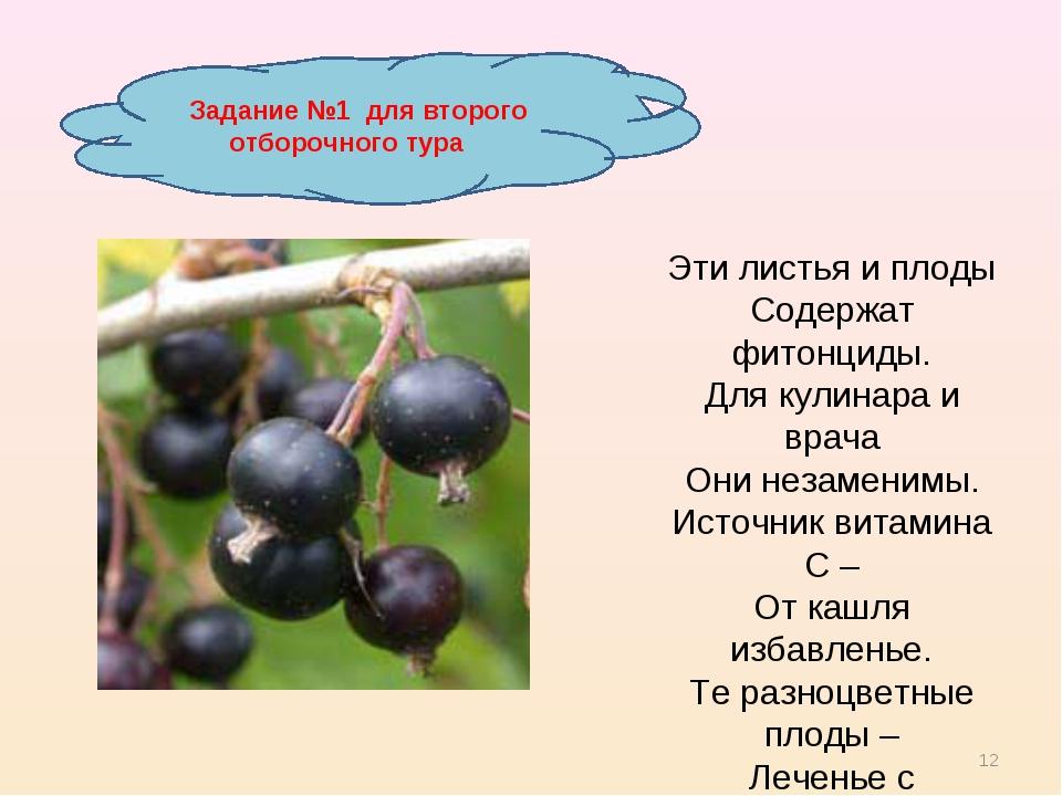 * Задание №1 для второго отборочного тура Эти листья и плоды Содержат фитонци...