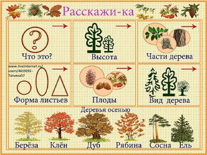 деревья (700x525, 194Kb)