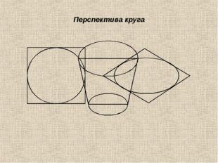 Перспектива круга