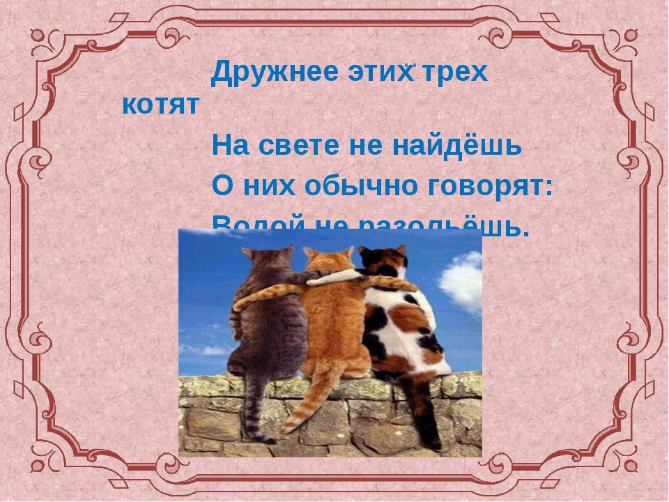 Дружнее этих трех котят На свете не найдёшь О них обычно говорят: Водой не р...