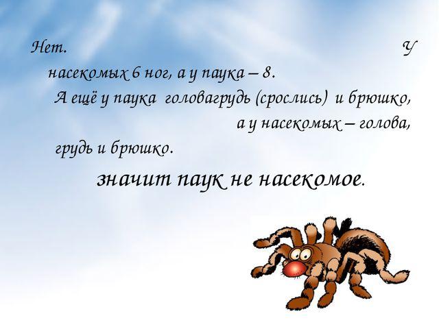 Нет. У насекомых 6 ног, а у паука – 8. А ещё у паука головагрудь (срослись) и...