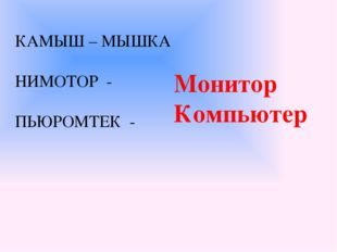 КАМЫШ – МЫШКА НИМОТОР - ПЬЮРОМТЕК - Монитор Компьютер