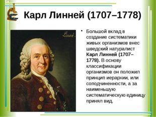Карл Линней (1707–1778) Большой вклад в создание систематики живых организмов