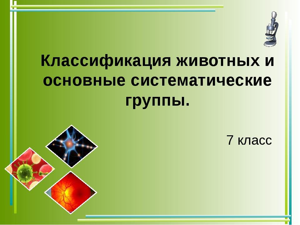 Классификация животных и основные систематические группы. 7 класс