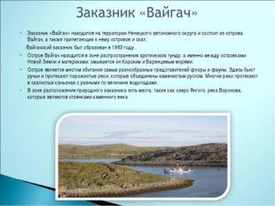 Заказник «Вайгач» находится на территории Ненецкого автономного округа и сост